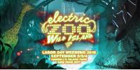 Download Electro House Dj Mix Tiesto - Live @ Mainstage, Electric Zoo, United States - 03 September 2016