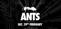Richy Ahmed - Live at ANTS Printworks, London - 29 February 2020